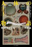 人体の物語 解剖学から見たヒトの不思議-電子書籍