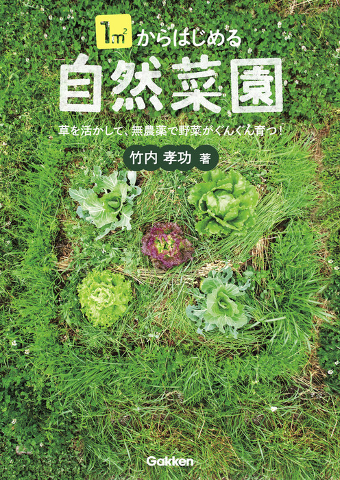 1㎡からはじめる自然菜園拡大写真