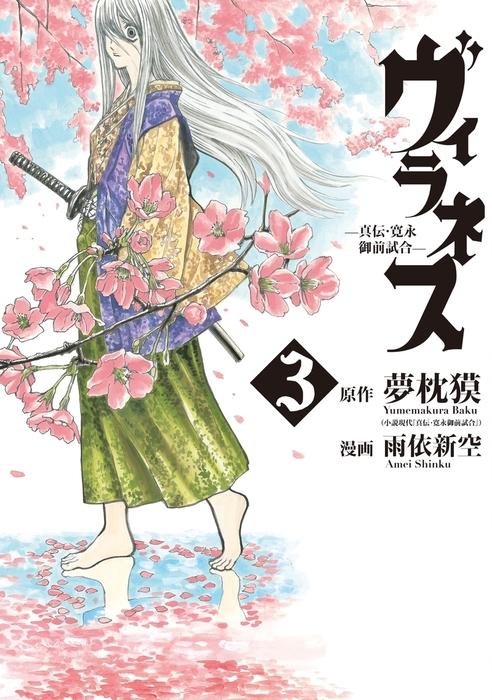 ヴィラネス ―真伝・寛永御前試合―(3)-電子書籍-拡大画像