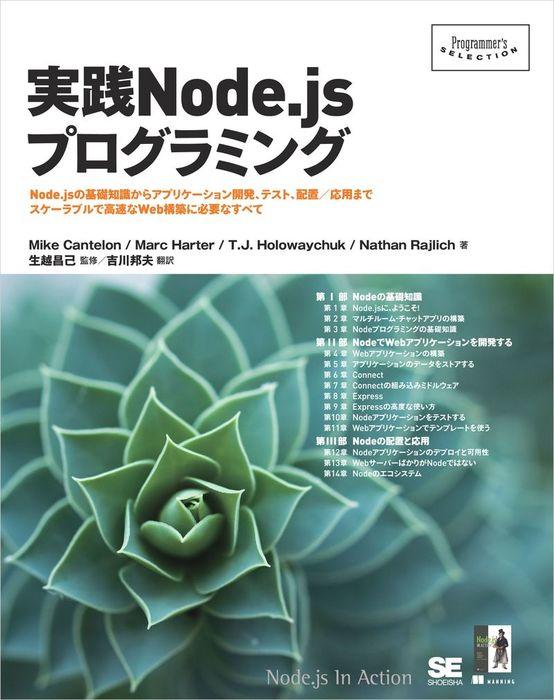 実践Node.jsプログラミング拡大写真