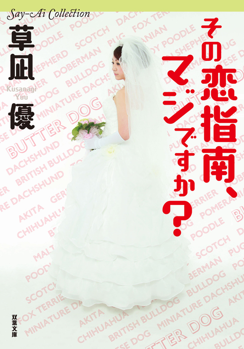 Say-Ai Collection その恋指南、マジですか?拡大写真