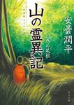 山の霊異記 幻惑の尾根-電子書籍