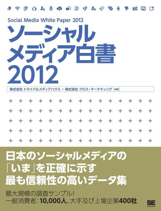 ソーシャルメディア白書2012拡大写真