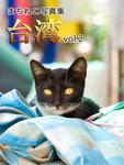 まちねこ写真集・台湾 vol.2-電子書籍