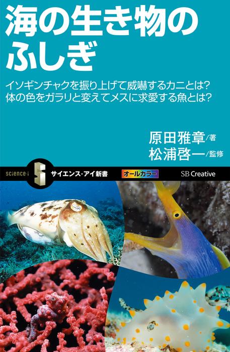 海の生き物のふしぎ イソギンチャクを振り上げて威嚇するカニとは?体の色をガラリと変えてメスに求愛する魚とは?拡大写真