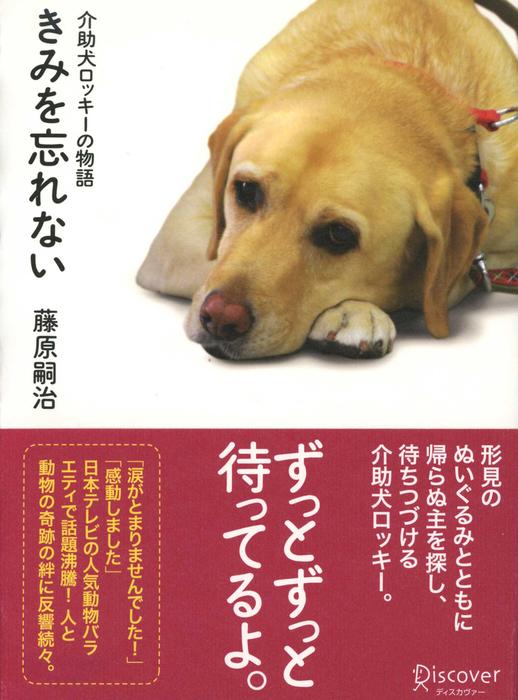 きみを忘れない 介助犬ロッキーの物語拡大写真