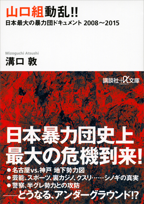 山口組動乱!! 日本最大の暴力団ドキュメント 2008~2015拡大写真
