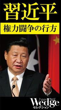 習近平 権力闘争の行方(Wedgeセレクション No.42)