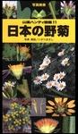 ヤマケイハンディ図鑑11 日本の野菊-電子書籍