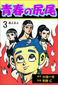 青春の尻尾3-電子書籍