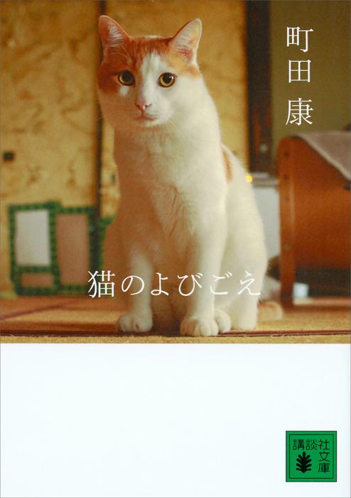 猫のよびごえ拡大写真