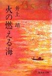 火の燃える海-電子書籍