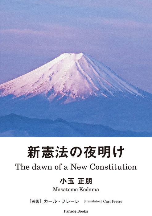 新憲法の夜明け The Dawn of a New Constitution拡大写真