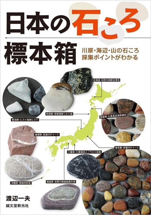日本の石ころ標本箱拡大写真