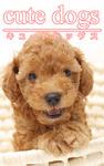 cute dogs01 トイプードル-電子書籍