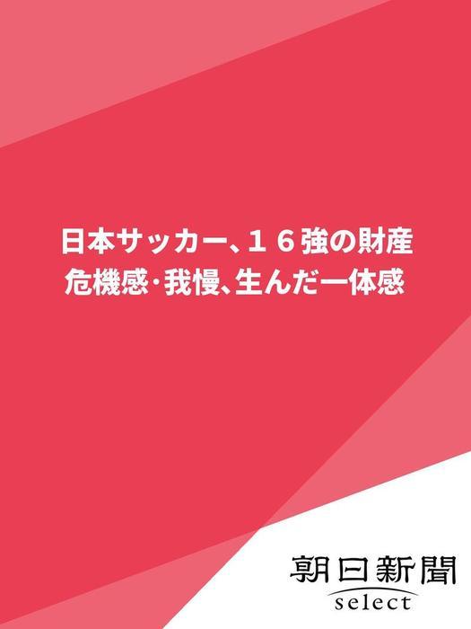 日本サッカー、16強の財産 危機感・我慢、生んだ一体感-電子書籍-拡大画像