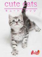 「cute cats」シリーズ