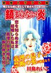 【愛憎トラブル編】鎮まらない炎-電子書籍