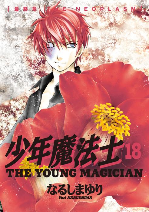 少年魔法士(18)-電子書籍-拡大画像