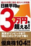 過去20年間で最長・最大の上昇波動 日経平均は3万円を超える!-電子書籍