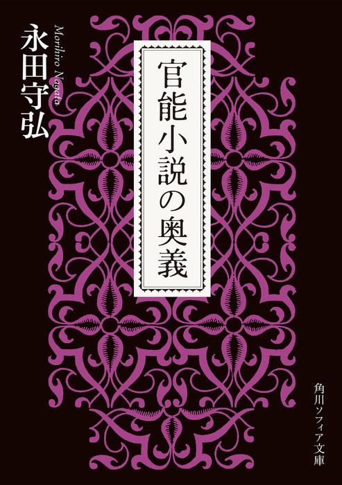 官能小説の奥義拡大写真