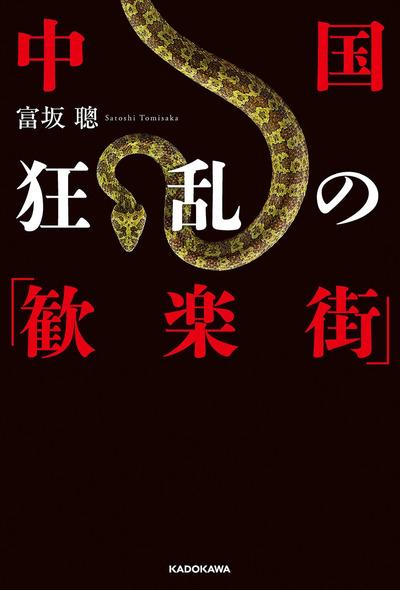 中国 狂乱の「歓楽街」-電子書籍