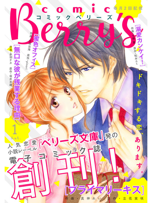 comic Berry's vol.1拡大写真