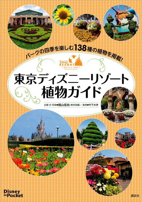 Disney in Pocket 東京ディズニーリゾート植物ガイド拡大写真
