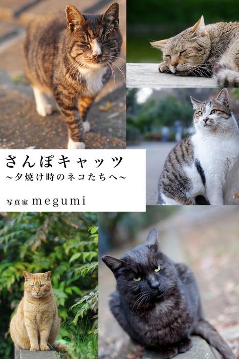 さんぽキャッツ ~夕焼け時のネコたちへ~拡大写真