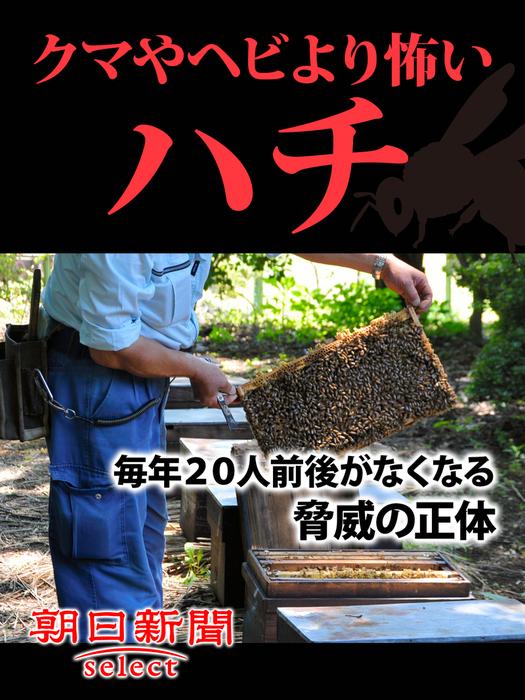 クマやヘビより怖いハチ 毎年20人前後がなくなる脅威の正体拡大写真