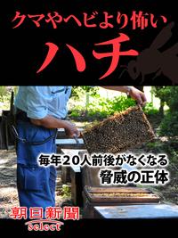 クマやヘビより怖いハチ 毎年20人前後がなくなる脅威の正体-電子書籍
