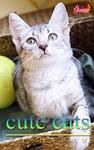 cute cats14 エジプシャンマウ-電子書籍