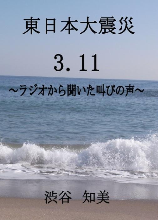 東日本大震災 3.11 ~ラジオから聞こえた叫びの声~拡大写真
