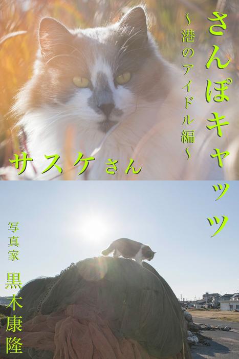 さんぽキャッツ サスケさん ~港のアイドル編~拡大写真