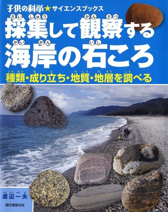 採集して観察する海岸の石ころ拡大写真