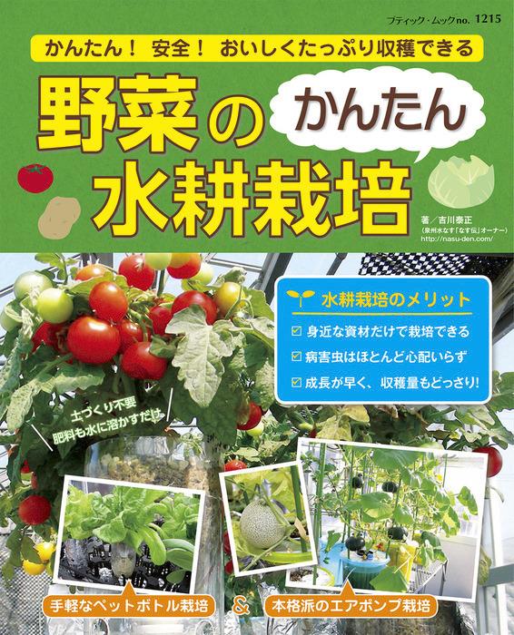 野菜のかんたん水耕栽培-電子書籍-拡大画像