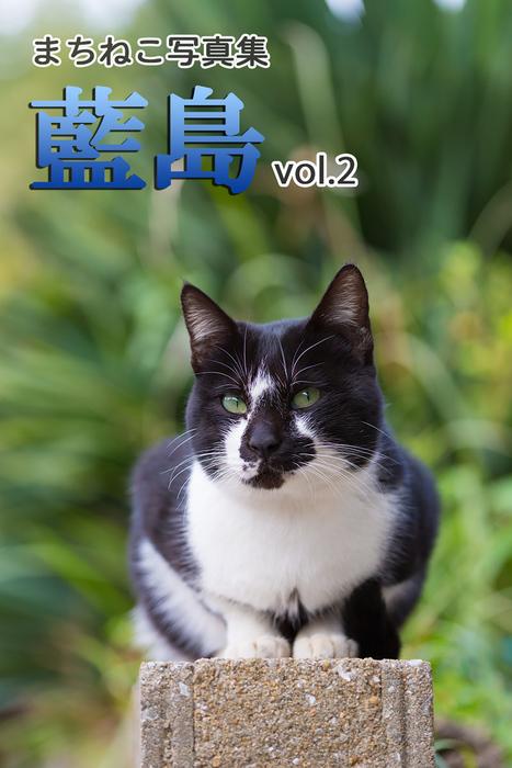 まちねこ写真集・藍島 vol.2拡大写真