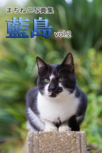 まちねこ写真集・藍島 vol.2-電子書籍