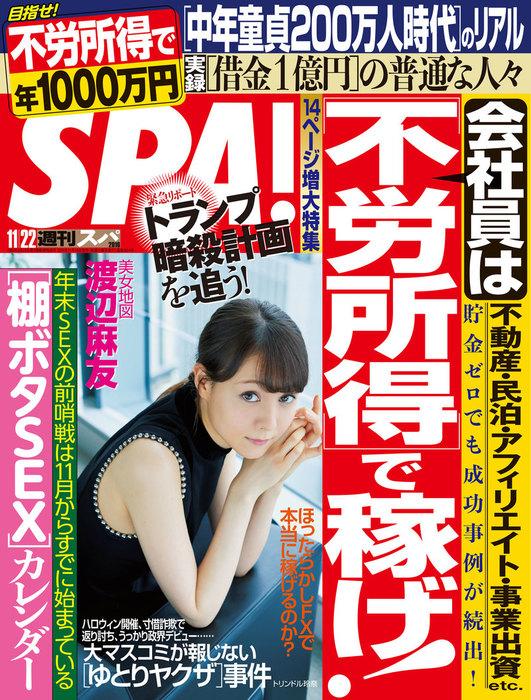 週刊SPA! 2016/11/22号-電子書籍-拡大画像