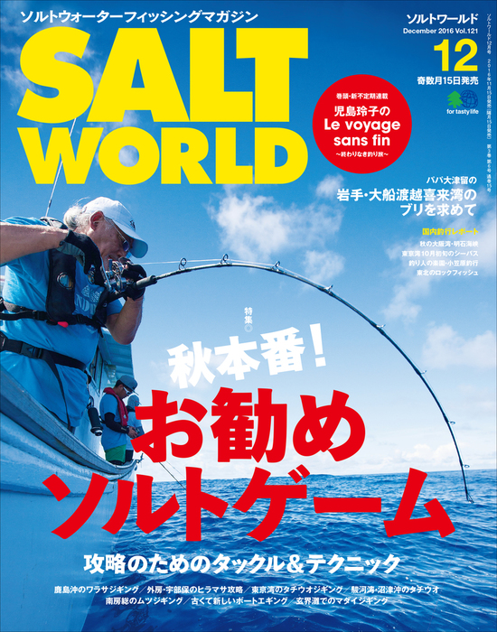 SALT WORLD 2016年12月号 Vol.121拡大写真