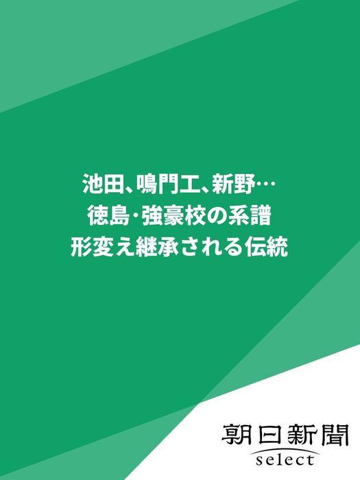 池田、鳴門工、新野…徳島・強豪校の系譜 形変え継承される伝統拡大写真