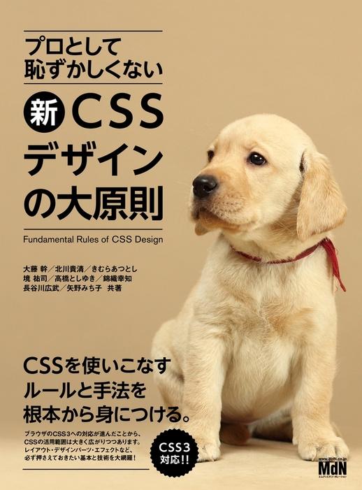 プロとして恥ずかしくない 新・CSSデザインの大原則拡大写真