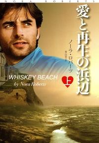 愛と再生の浜辺(上)