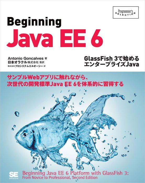 Beginning Java EE 6~GlassFish 3で始めるエンタープライズJava拡大写真