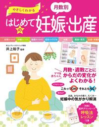 やさしくわかる 月数別 はじめての妊娠・出産-電子書籍