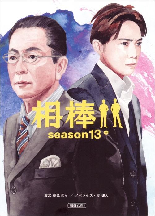 相棒 season13 中-電子書籍-拡大画像