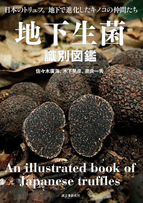 地下生菌識別図鑑拡大写真
