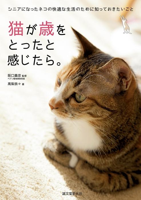 猫が歳をとったと感じたら。拡大写真