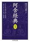 阿含経典1-電子書籍
