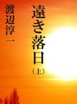 遠き落日 (上)-電子書籍